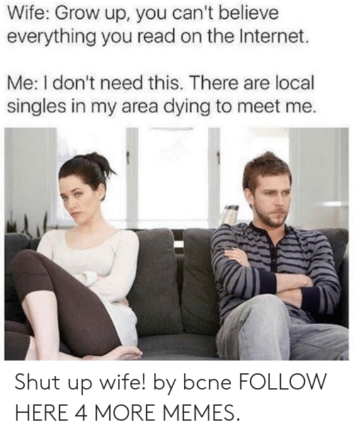 Localism: Wife: Grow up, you can't believe  everything you read on the Internet.  Me: I don't need this. There are local  singles in my area dying to meet me. Shut up wife! by bcne FOLLOW HERE 4 MORE MEMES.