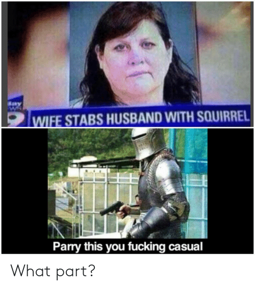 Fucking Casual: WIFE STABS HUSBAND WITH SQUIRREL  Parry this you fucking casual What part?