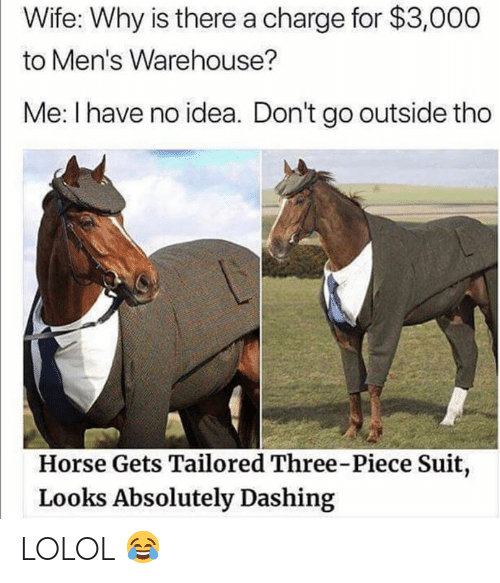 Memes, Horse, and Wife: Wife: Why is there a charge for $3,000  to Men's Warehouse?  Me: I have no idea. Don't go outside tho  Horse Gets Tailored Three-Piece Suit,  Looks Absolutely Dashing LOLOL 😂