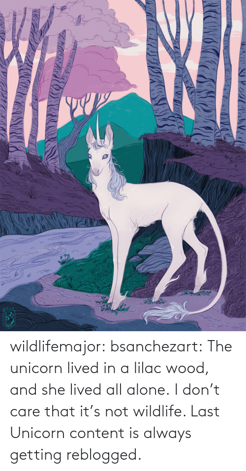 Unicorn: wildlifemajor:  bsanchezart:  The unicorn lived in a lilac wood, and she lived all alone.   I don't care that it's not wildlife. Last Unicorn content is always getting reblogged.