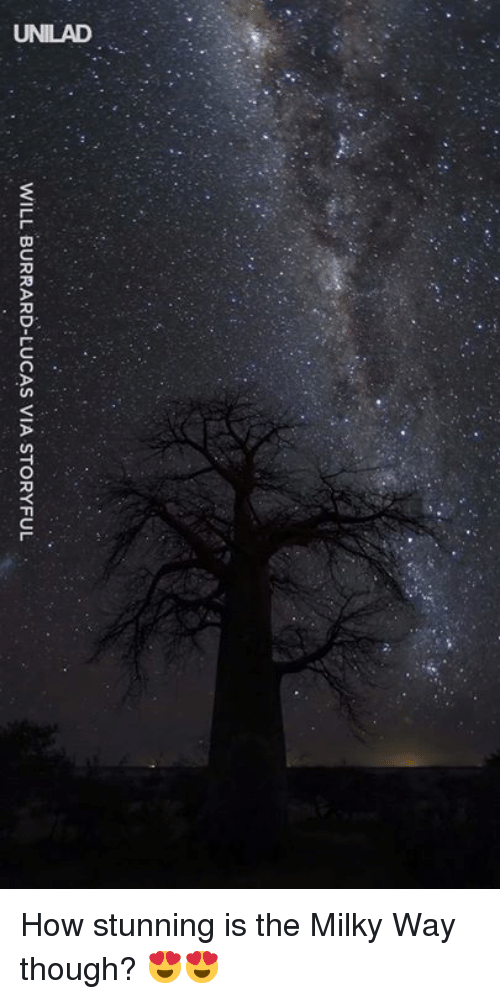 Dank, Milky Way, and 🤖: WILL BURRARD-LUCAS VIA STORYFUL How stunning is the Milky Way though? 😍😍