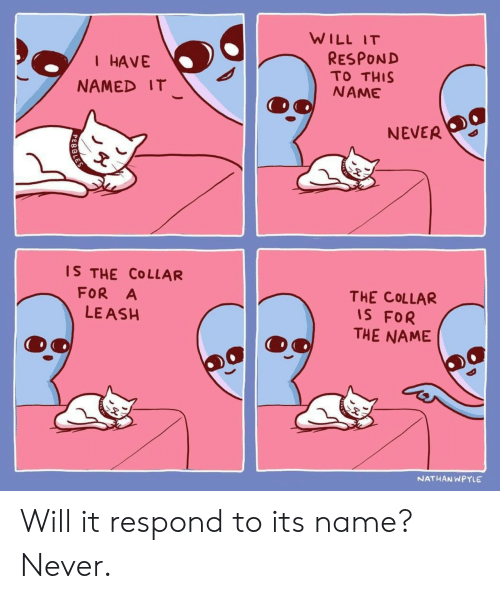 Ash, Never, and Name: WILL IT  RESPOND  TO THIS  NAME  I HAVE  NAMED IT  NEVER  IS THE COLLAR  FOR A  LE ASH  THE COLLAR  IS FOR  THE NAME  NATHANWPYLE Will it respond to its name? Never.
