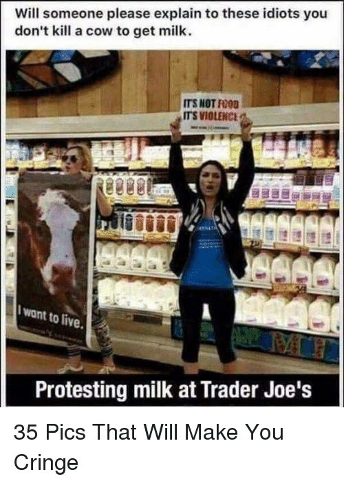 Protesting Milk: Will someone please explain to these idiots you  don't kill a cow to get milk.  ITS NOT FOOD  ITS VIOLENC  I want to live  Protesting milk at Trader Joe's 35 Pics That Will Make You Cringe