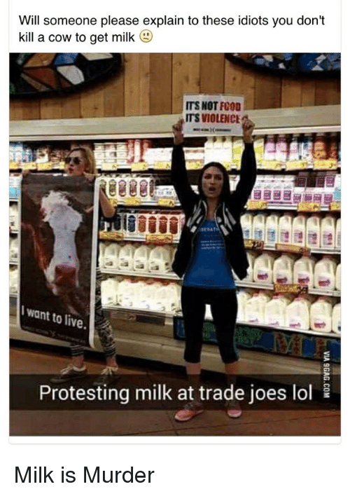 Food, Lol, and Reddit: Will someone please explain to these idiots you don't  kill a cow to get milk  (g)  ITS NOT FOOD  ITS VIOLENCE  want to live.  10  Protesting milk at trade joes lol Milk is Murder