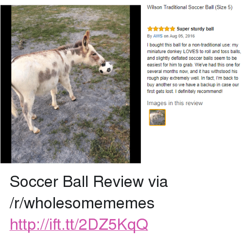 "aws: Wilson Traditional Soccer Ball (Size 5)  Super sturdy ball  By AWS on Aug 05, 2016  I bought this ball for a non-traditional use: my  miniature donkey LOVES to roll and toss balls,  and slightly deflated soccer balls seem to be  easiest for him to grab. We've had this one for  several months now, and it has withstood his  rough play extremely well. In fact, I'm back to  buy another so we have a backup in case our  first gets lost. I definitely recommend!  Images in this review <p>Soccer Ball Review via /r/wholesomememes <a href=""http://ift.tt/2DZ5KqQ"">http://ift.tt/2DZ5KqQ</a></p>"