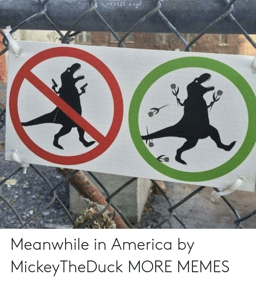 America, Dank, and Memes: win p Meanwhile in America by MickeyTheDuck MORE MEMES