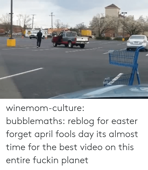 Easter, Tumblr, and Best: winemom-culture: bubblemaths: reblog for easter forget april fools day its almost time for the best video on this entire fuckin planet