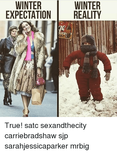 Memes, True, and Winter: WINTER  EXPECTATION REALITY  WINTER True! satc sexandthecity carriebradshaw sjp sarahjessicaparker mrbig