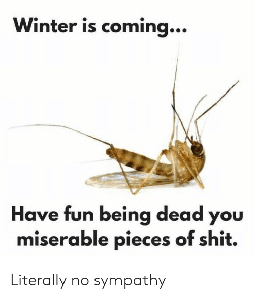 Shit, Winter, and Fun: Winter is coming...  Have fun being dead you  miserable pieces of shit. Literally no sympathy