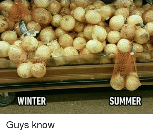Dank, Winter, and Summer: WINTER  SUMMER Guys know