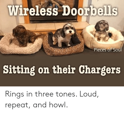 Pieces: Wireless Doorbells  Pieces of Soul  Sitting on their Chargers Rings in three tones. Loud, repeat, and howl.