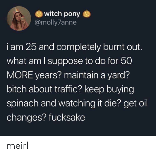 maintain: witch pony  @molly7anne  i am 25 and completely burnt out.  what am I suppose to do for 50  MORE years? maintain a yard?  bitch about traffic? keep buying  spinach and watching it die? get oil  changes? fucksake meirl