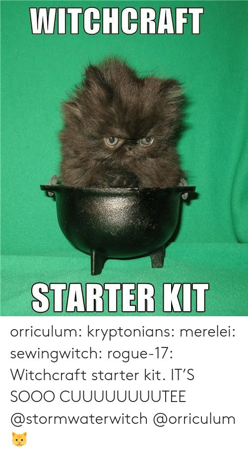 kit: WITCHCRAFT  STARTER KIT orriculum:  kryptonians:  merelei: sewingwitch:  rogue-17:  Witchcraft starter kit.  IT'S SOOO CUUUUUUUUTEE  @stormwaterwitch   @orriculum   🐱