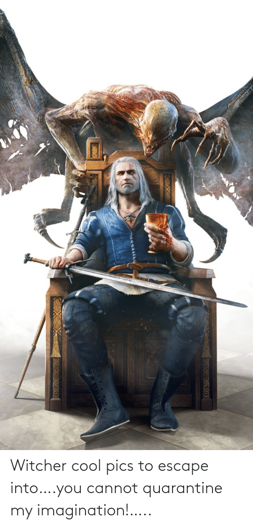 Cannot: Witcher cool pics to escape into….you cannot quarantine my imagination!…..