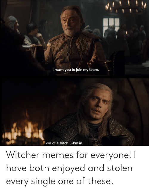 Have: Witcher memes for everyone! I have both enjoyed and stolen every single one of these.