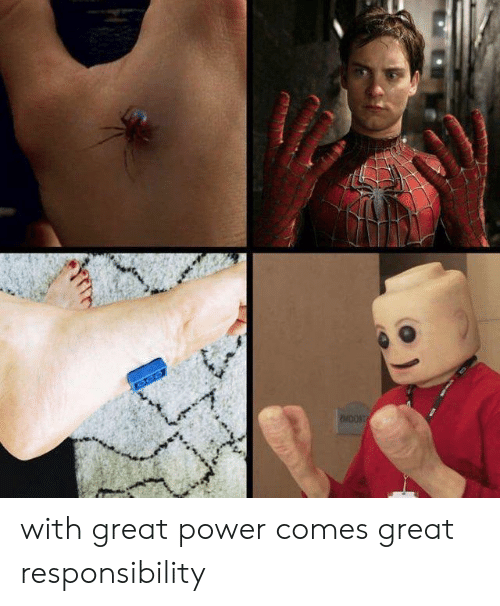 Memes, Power, and Responsibility: with great power comes great responsibility
