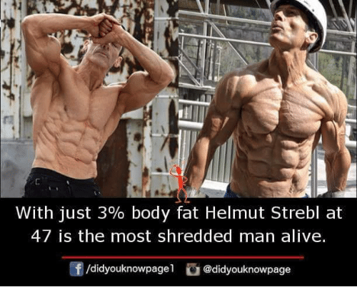Alive, Memes, and Fat: With just 3% body fat Helmut Strebl at  47 is the most shredded man alive.  f/didyouknowpagel@didyouknowpage