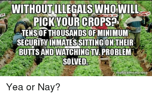 Making Meme: WITHOUT  WHO WILL  PICK YOUR CROPS  TENSIOF THOUSANDS OF MINIMUM  SECURITY INMATES SITTING ON THEIR  BUTTS AND WATCHINGTVA PROBLEM  SOLVED-  make meme org Yea or Nay?
