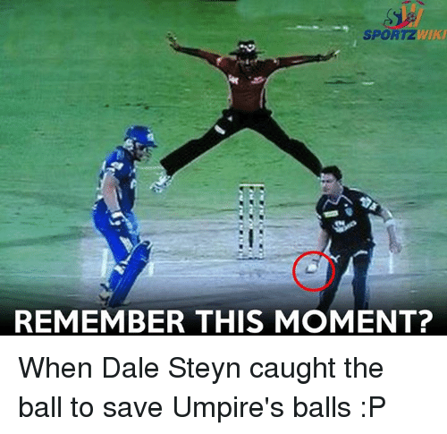 Memes, Dale Steyn, and 🤖: WKU  SPORTZ  REMEMBER THIS MOMENT? When Dale Steyn caught the ball to save Umpire's balls :P