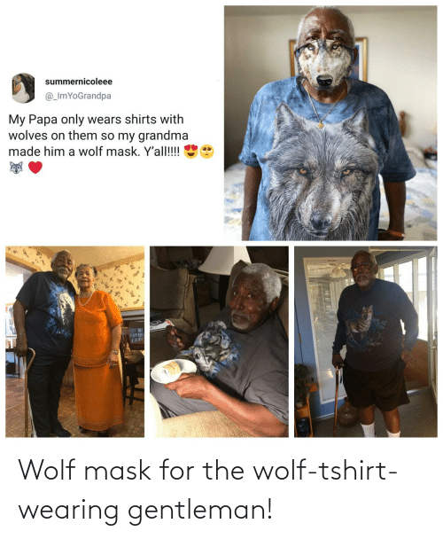 Mask: Wolf mask for the wolf-tshirt-wearing gentleman!