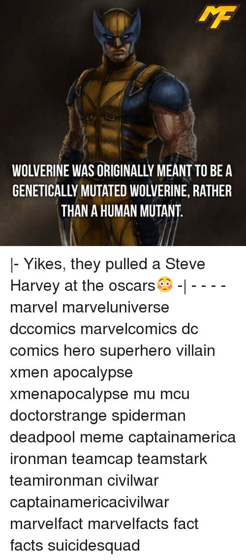 Memes, SpiderMan, and Steve Harvey: WOLVERINE WAS ORIGINALLY MEANT TO BE A  GENETICALLY MUTATED WOLVERINE, RATHER  THAN A HUMAN MUTANT |- Yikes, they pulled a Steve Harvey at the oscars😳 -| - - - - marvel marveluniverse dccomics marvelcomics dc comics hero superhero villain xmen apocalypse xmenapocalypse mu mcu doctorstrange spiderman deadpool meme captainamerica ironman teamcap teamstark teamironman civilwar captainamericacivilwar marvelfact marvelfacts fact facts suicidesquad
