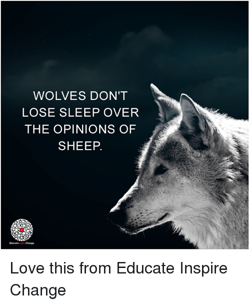 Memes, Sleeping, and Change: WOLVES DON'T  LOSE SLEEP OVER  THE OPINIONS OF  SHEEP.  EducateinspireChange Love this from Educate Inspire Change