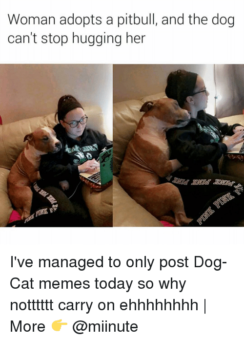 Funny, Pitbulls, and Carry On: Woman adopts a pitbull, and the dog  can't stop hugging her I've managed to only post Dog-Cat memes today so why notttttt carry on ehhhhhhhh | More 👉 @miinute