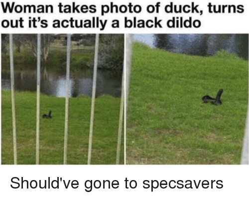 Dildo, Black, and Duck: Woman takes photo of duck, turns  out it's actually a black dildo