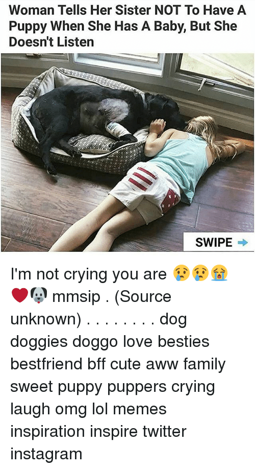 Aww, Crying, and Cute: Woman Tells Her Sister NOT To Have A  Puppy When She Has A Baby, But She  Doesn't Listen  SWIPE → I'm not crying you are 😢😢😭❤🐶 mmsip . (Source unknown) . . . . . . . . dog doggies doggo love besties bestfriend bff cute aww family sweet puppy puppers crying laugh omg lol memes inspiration inspire twitter instagram