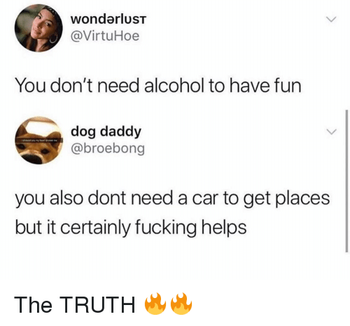 Fucking, Memes, and Alcohol: wondarluST  @VirtuHoe  You don't need alcohol to have fun  dog daddy  / @broebong  you also dont need a car to get places  but it certainly fucking helps The TRUTH 🔥🔥