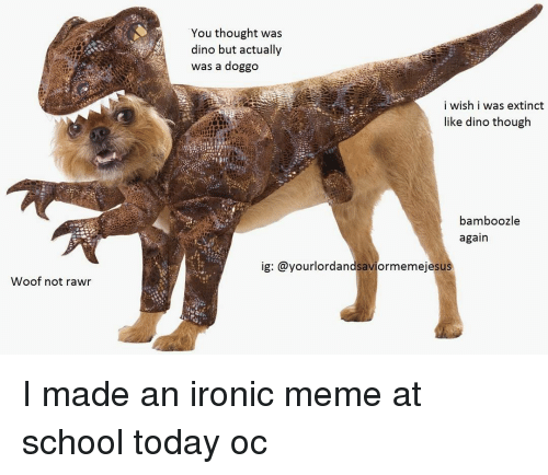 Ironic, Memes, and 🤖: Woof not rawr  You thought was  dino but actually  was a doggo  i wish i was extinct  like dino though  bamboozle  again  ig: @yourlordandsaviormemeje sus I made an ironic meme at school today oc