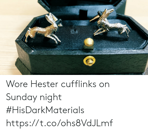 Memes, Sunday, and 🤖: Wore Hester cufflinks on Sunday night #HisDarkMaterials https://t.co/ohs8VdJLmf