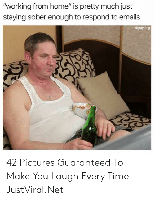 "Home, Pictures, and Time: ""working from home"" is pretty much just  staying sober enough to respond to emails  drgrayfang 42 Pictures Guaranteed To Make You Laugh Every Time - JustViral.Net"