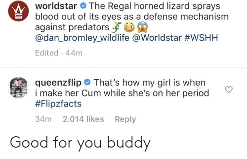 Cum, Good for You, and Period: worldstar The Regal horned lizard sprays  blood out of its eyes as a defense mechanism  against predators  @dan_bromley_wildlife @Worldstar #WSHH  Edited 44m  queenzflip  i make her Cum while she's on her period  #Flipzfacts  That's how my girl is when  34m  2.014 likes  Reply Good for you buddy