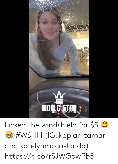 Wshh, Kaplan, and Star: WORLE STAR  D3  2  HIP HOP.COM Licked the windshield for $5 😩😂 #WSHH (IG: kaplan.tamar and katelynmccaslandd) https://t.co/rSJWGpwPb5