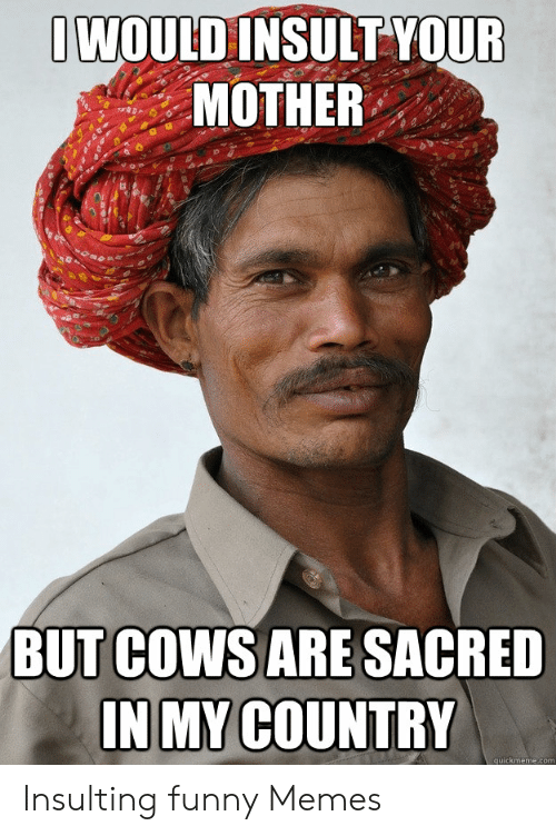 Funny, Memes, and Insulting: WOULD INSULT YOUF  MOTHER  BUT CoWSARE SACRED  INMY COUNTRY  quickmeme.com Insulting funny Memes