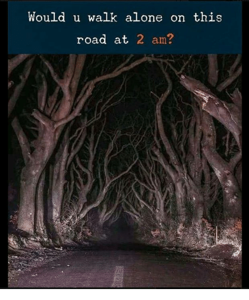 Being Alone, Road, and This: Would u walk alone on this  road at 2 am?