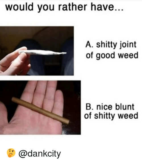 Memes, Weed, and Would You Rather: would you rather have..  A. shitty joint  of good weed  B. nice blunt  of shitty weed 🤔 @dankcity