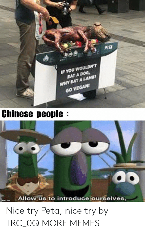 Dank, Memes, and Target: WOULDN'T  EAT A DOG  YEAT A LAMB  IF YOU  WHY  GO VEGAN  Chinese people:  Allow us to introduce ourselves Nice try Peta, nice try by TRC_0Q MORE MEMES
