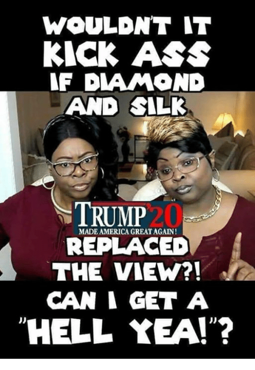"America, Ass, and Memes: WOULDNT IT  KICK ASS  F DIAMOND  AND SILK  TRUMP  20  MADE AMERICA GREAT AGAIN!  REPLACED  THE VIEW?!  CAN I GET A  ""HELL YEA!""?  JD"