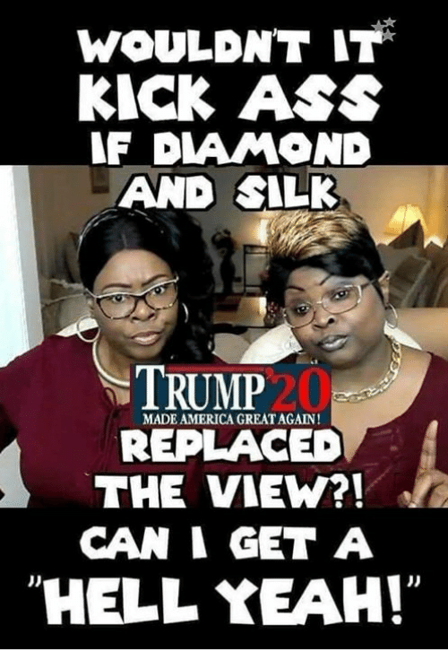 America, Ass, and Memes: WOULDNT IT  KICK ASS  F DIAMOND  AND SILK  TRUMP  MADE AMERICA GREATAGAIN!  REPLACED  THE VIEW?!  CAN I GET A  HELL YEAH!  J)