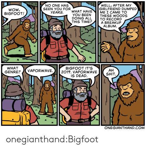 Bigfoot, Target, and Tumblr: WOW  BIGFOOT!  NO ONE HAS  SEEN YOU FOR  WELL, AFTER MY  GIRLFRIEND DUMPED  ME I CAME TO  YEARS, WHAT HAVE  OU BETHESE WOODS  DOING ALL TO RECORD  THIS TIME?A BREAKUP  ALBUM  WHAT  GENRE?/VAPORWAV  BIGFOOT IT'S  E.2019. vAPORWAVESHIT  AH  IS DEAD  ONEGIANTHAND.COM onegianthand:Bigfoot