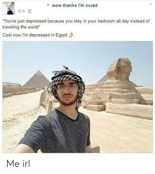 """Wow, Cool, and World: wow thanks i'm cured  11 h  You're just depressed because you stay in your bedroom all day instead of  traveling the world""""  Cool now lI'm depressed in Egypt d Me irl"""