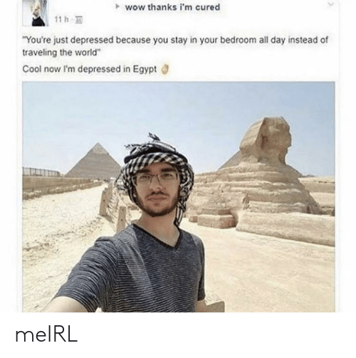"""Wow, Cool, and World: wow thanks i'm cured  11 h  """"You're just depressed because you stay in your bedroom all day instead of  traveling the world""""  Cool now I'm depressed in Egypt meIRL"""