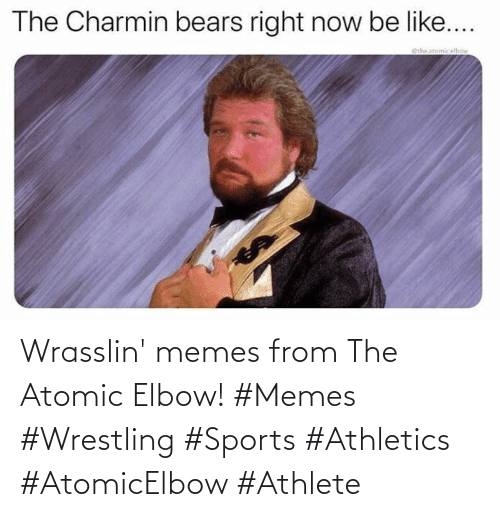 Wrestling: Wrasslin' memes from The Atomic Elbow! #Memes #Wrestling #Sports #Athletics #AtomicElbow #Athlete