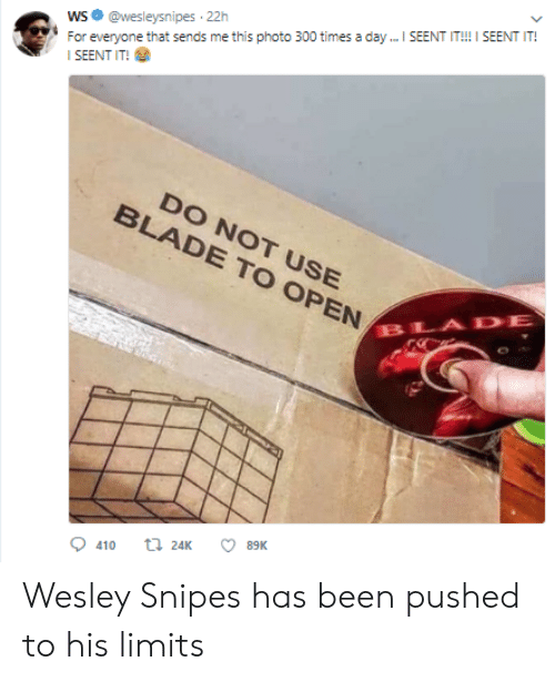 Seent It: WS@wesleysnipes 22h  SEENT IT!  DO NOT USE  BLADE TO OPEN  BLADE  0410 24K ㅇ 89K Wesley Snipes has been pushed to his limits