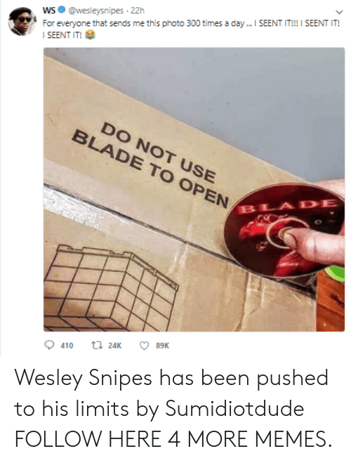 Seent It: WS@wesleysnipes 22h  SEENT IT!  DO NOT USE  BLADE TO OPEN  BLADE  0410 24K ㅇ 89K Wesley Snipes has been pushed to his limits by Sumidiotdude FOLLOW HERE 4 MORE MEMES.