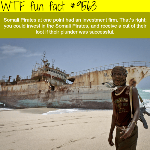 Wtf, Pirates, and Somali: WTF fun fact 563  #  Somali Pirates at one pointe hat an investment firm. That's right;  you could invest in the Somali Pirates, and receive a cut of their  loot if their plunder was successful.  8 50
