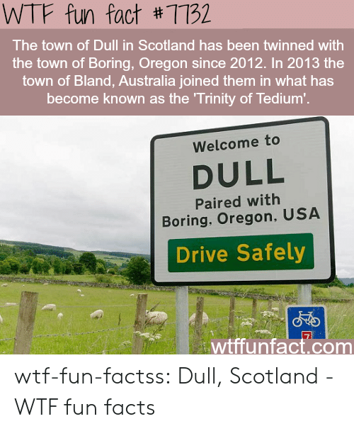Facts, Tumblr, and Wtf: WTF fun fact #7732  The town of Dull in Scotland has been twinned with  the town of Boring, Oregon since 2012. In 2013 the  town of Bland, Australia joined them in what has  become known as the Trinity of Tedium'.  Welcome to  DULL  Paired with  Boring, Oregon, USA  Drive Safely  wtffunfact.com wtf-fun-factss:  Dull, Scotland - WTF fun facts