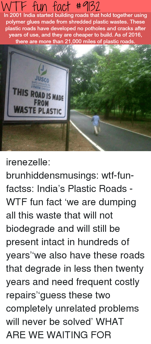 Target, Tumblr, and Wtf: WTF fun fact #9132  In 2001 India started building roads that hold together using  polymer glues made from shredded plastic wastes. These  plastic roads have developed no potholes and cracks after  years of use, and they are cheaper to build. As of 2016,  there are more than 21,000 miles of plastic roads.  JuSCO  ATAYA Enter  THIS ROAD IS MADE  FROM  WASTE PLASTIC irenezelle: brunhiddensmusings:  wtf-fun-factss: India's Plastic Roads - WTF fun fact 'we are dumping all this waste that will not biodegrade and will still be present intact in hundreds of years''we also have these roads that degrade in less then twenty years and need frequent costly repairs''guess these two completely unrelated problems will never be solved'  WHAT ARE WE WAITING FOR